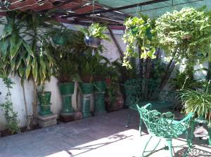 Patio off the bedroom 2