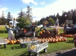 Smallwoods Harvest, Peshastin, Washington