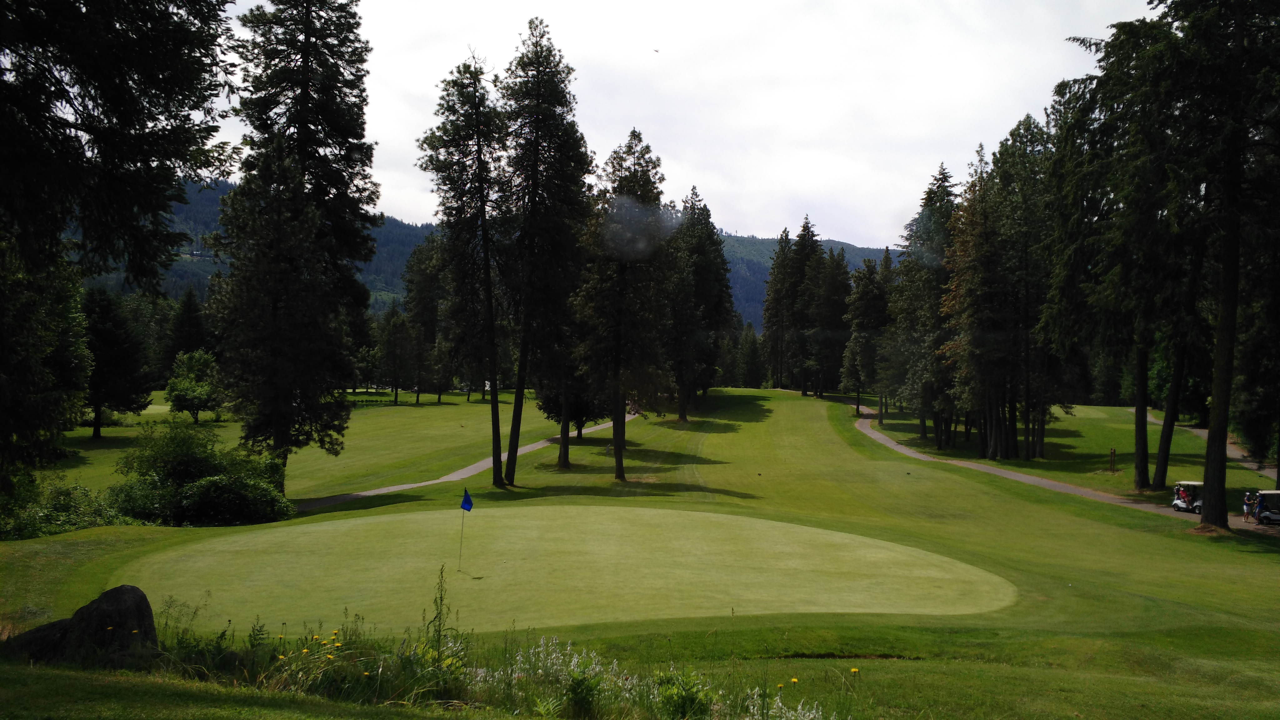 Wild Huckleberry View at Golf Course